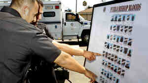 Los Angeles police officers point to known local gang suspects after a federal gang raid operation in Los Angeles on Aug. 25, 2010.