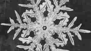 Earliest Snowflake Photos From 1885