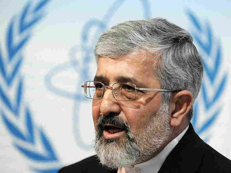 Iranian ambassador to the International Atomic Energy Agency Ali Asghar Soltanieh is shown here in November 2009 at the U.N. agency's headquarters in Vienna.