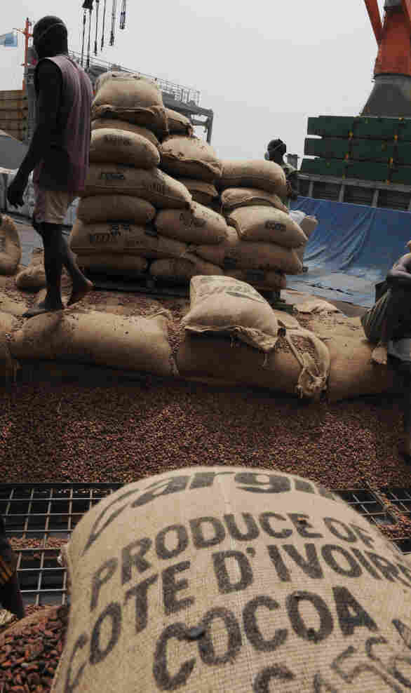 Bags of cocoa beans on Jan. 18, 2011 at the Port of Abidjan.