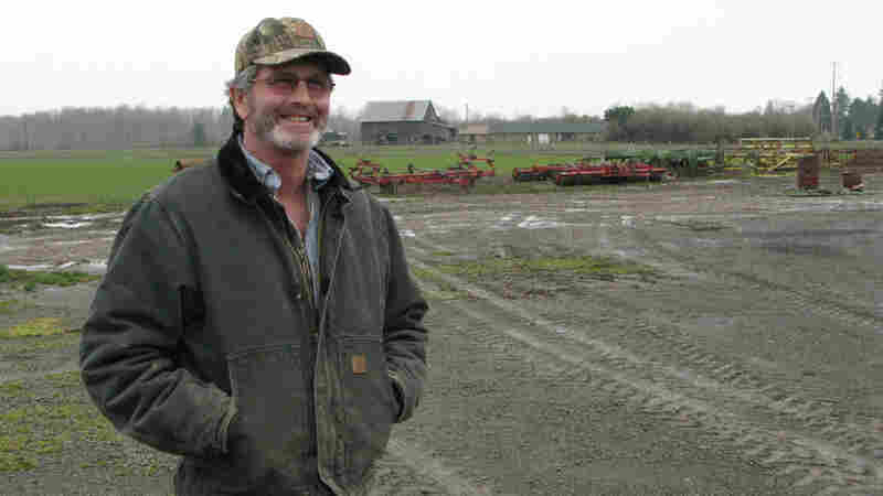 "Farmer Tim Winn, who has a farm on the banks of the Willamette River, says government scientists have concluded that there is nothing dangerous about the ""Roundup Ready"" version of the sugar beet crop."