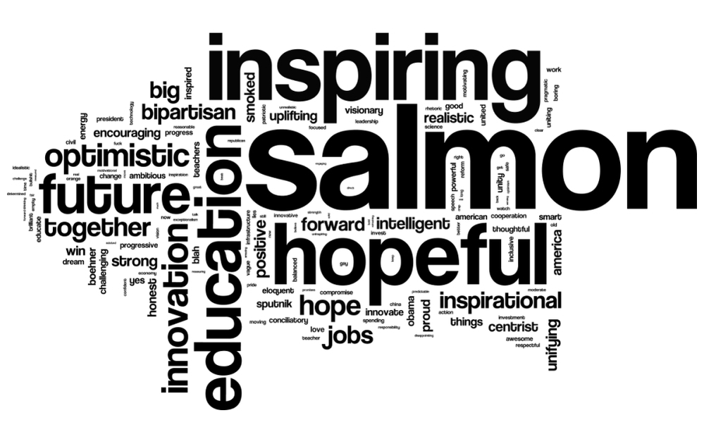 We asked our listeners to describe President Obama's State of the Union address in three words. This is a word cloud of the more than 12,000 words we received.
