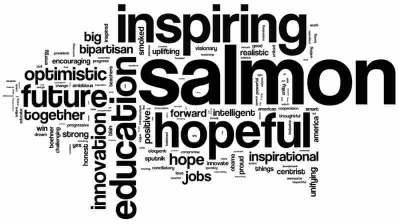 We asked our listeners to describe President Barack Obama's State of the Union address in three words. This is a word cloud of the more than 12,000 words we received.