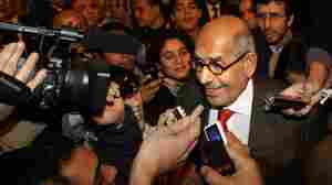 ElBaradei Back In Egypt; Says It's Time For A New Government
