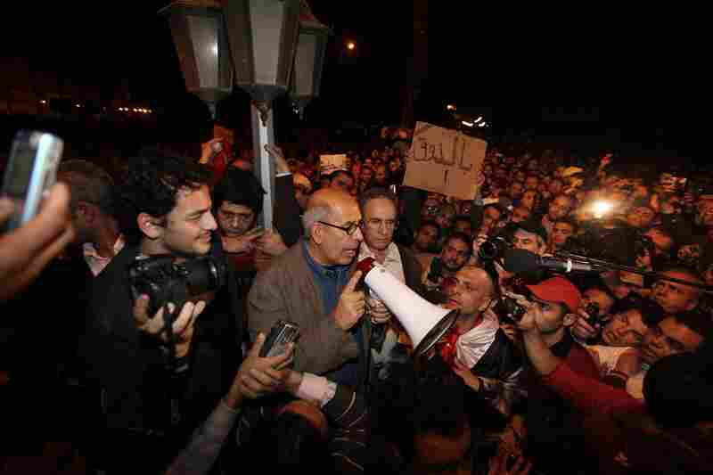 Nobel Peace laureate Mohamed ElBaradei, the former head of the International Atomic energy Agency, appeared at the protests in Cairo's Tahrir square around 7 p.m on Sunday.