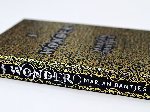 The cover of I Wonder, Marian Bantjes, The Monacelli Press, 2010