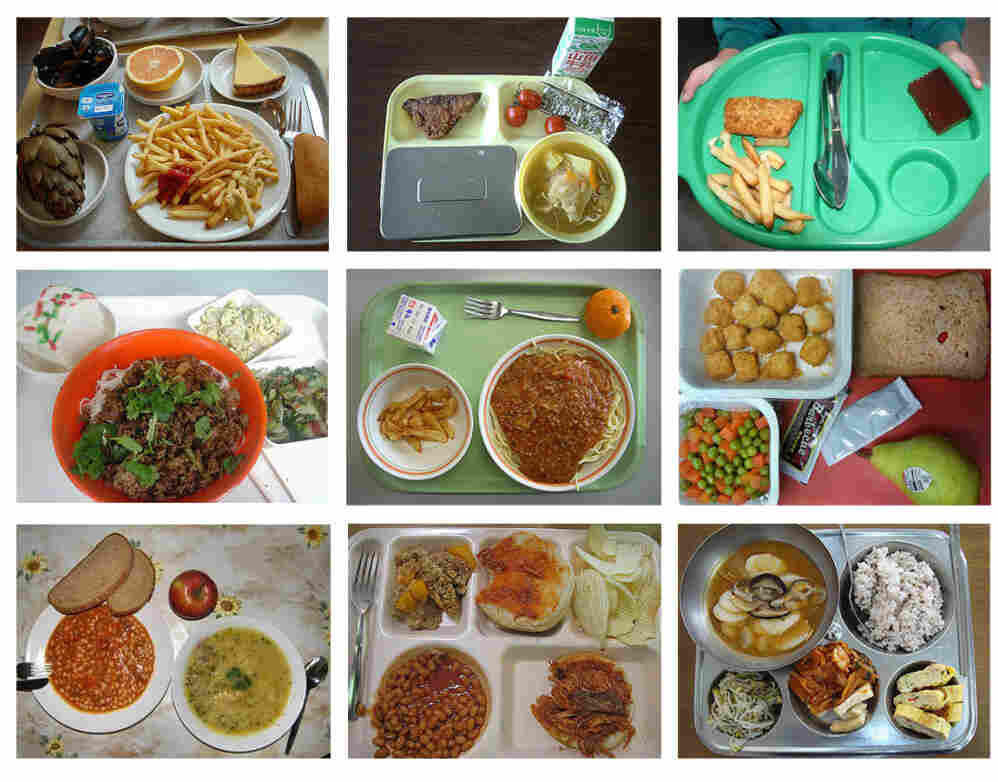 A collection of school lunches from around the world.