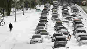 Cars sit in the northbound lanes of Lake Shore Drive after accidents and  drifting snow stranded the drivers during last night's blizzard February 2, 2011  in Chicago,