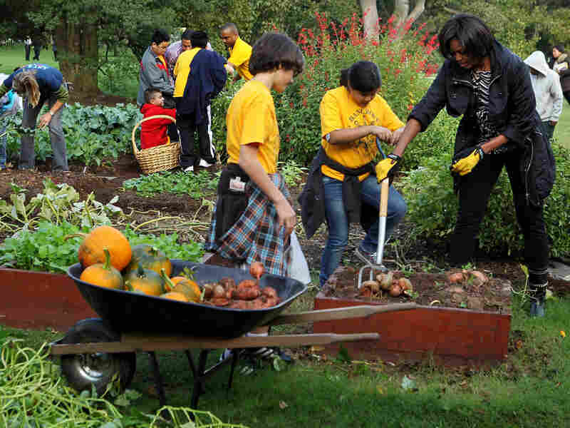 Michelle Obama harvests sweet potatoes with local fifth-graders from Bancroft Elementary as they participate in the White House Kitchen Garden Fall Harvest on Oct. 20.