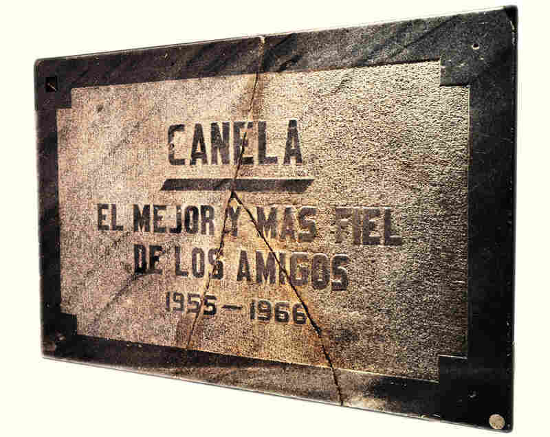 The gravestone of Peron's dog, Canela, is part of the collection of 14,000 objects that former Peron aide Mario Rotundo says he wants to auction off.