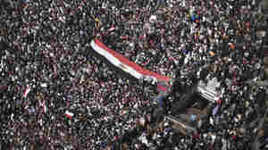 Egypt: Protest Movement Continues; Government Projects 'Business As Usual'