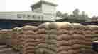 Power Struggle Halts Cocoa Exports In Ivory Coast