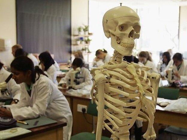 Students at King Edward VI High School for Girls in Birmingham, England, study biology.