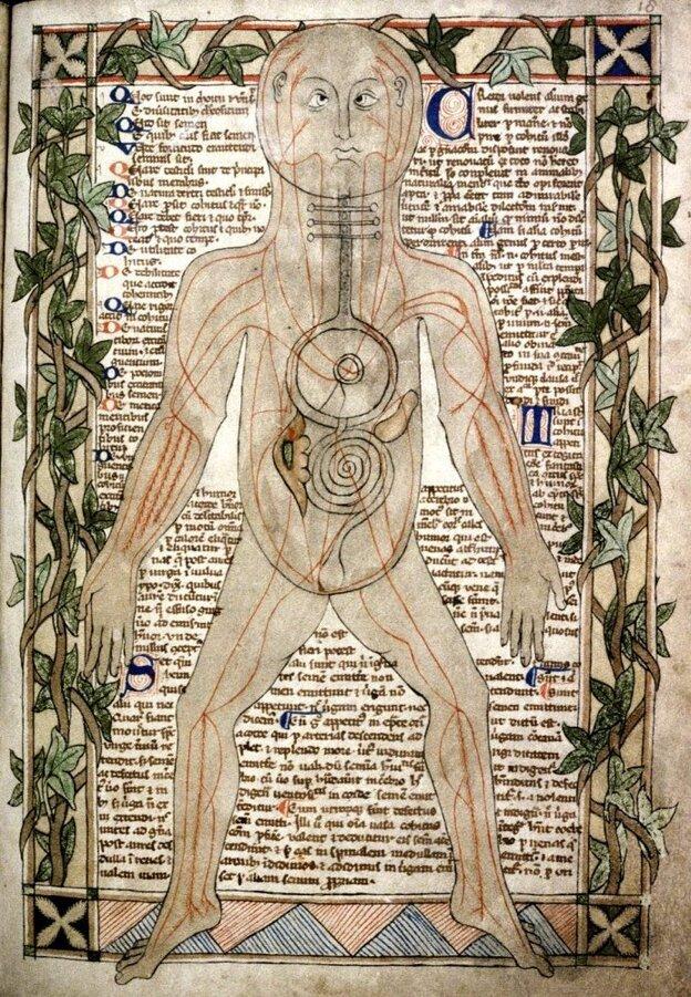 English manuscript c. 1292 (MS. Ashmole 399 fol. 023v-024r)