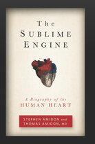 Cover: The Sublime Engine
