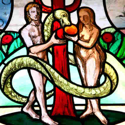 "Knust writes that ""the story of the garden of Eden is the second of two creation stories, the first of which offers quite a different picture of male-female creation, one in which God creates humankind all at once."""