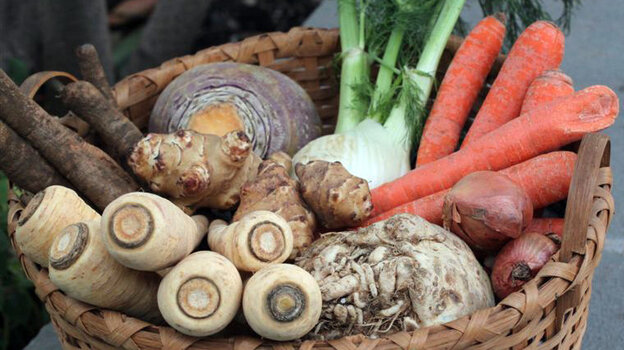 A basket holds an assortment of root vegetables, along with fennel and onions