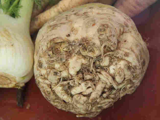 Celery root, or celeriac