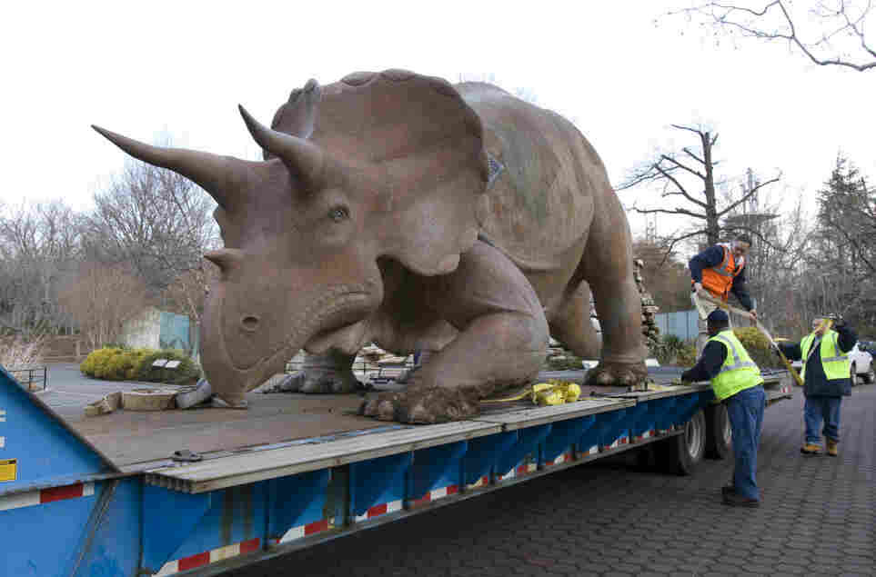 """The """"Uncle Beazley"""" fiberglass sculpture is placed on a flatbed truck at the National Zoo, on Feb. 16. Donated to the Smithsonian in 1967, the triceratops statue is getting a facelift after many years of being loved."""