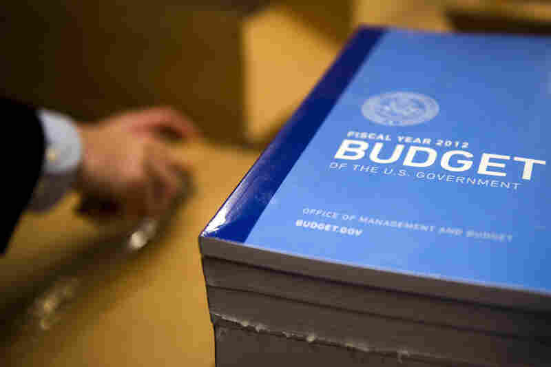 President Obama unveiled his 2012 budget on Monday, proposing a raft of spending cuts and tax hikes. It includes a proposed limit on the charitable deduction for the top income bracket, which has nonprofit organizations concerned.