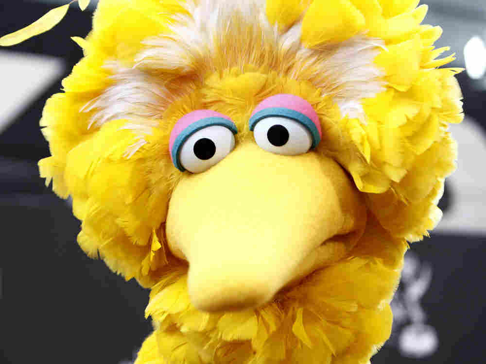 Sesame Street, with its iconic star  Big Bird, may be one the public broadcasting programs that could lose government  funding, under budget cuts proposed by House Republicans.