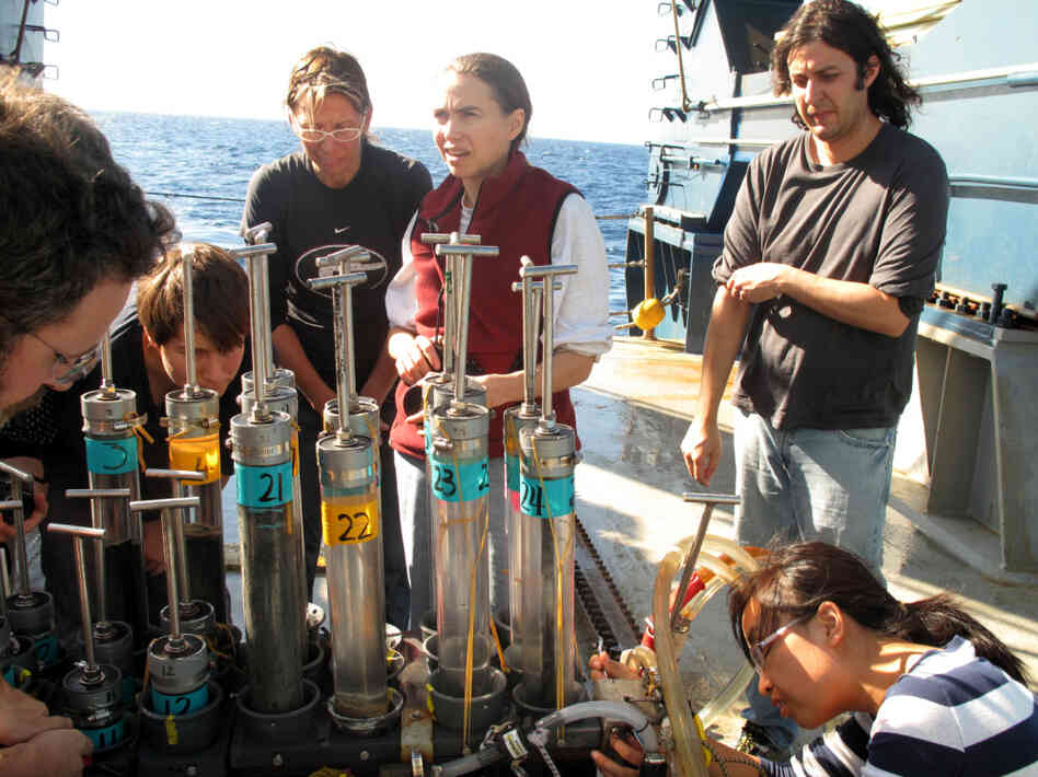 Researchers aboard the Atlantis, a research vessel operated by the Woods Hole Oceanographic Institution, exam