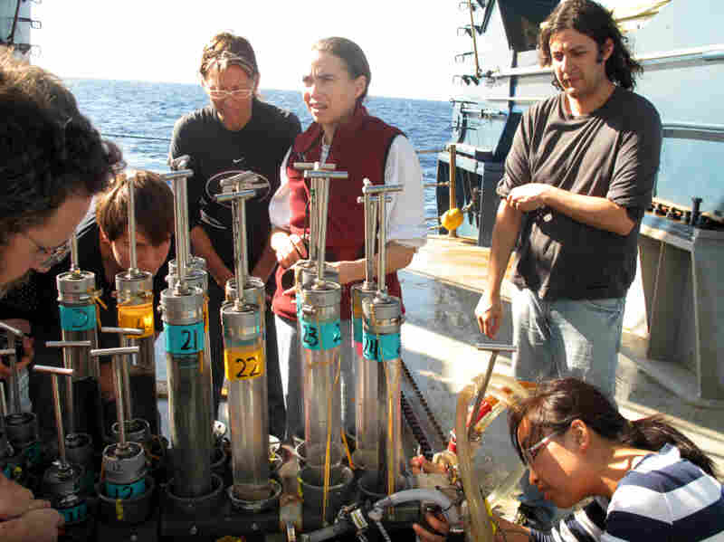 Researchers aboard the Atlantis, a research vessel operated by the Woods Hole Oceanographic Institution, examine core samples brought up from the sea floor of the Gulf of Mexico by the deep-sea submersible Alvin on Nov. 24, 2010. The scientific community is conflicted about the lack of direction, coordination and funding in studying the aftermath of the Gulf of Mexico oil spill.