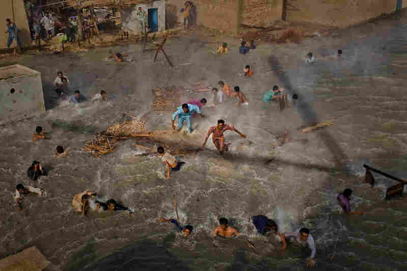 Flood victims scramble for food rations as they battle the downwash from a Pakistan Army helicopter during relief operations on September 13, 2010 in the village of Goza in Dadu district in Sindh province, Pakistan.