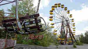Life, Thriving In The Chernobyl Exclusion Zone