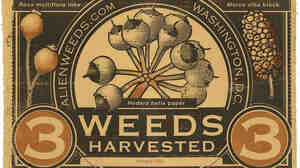 '3-Weed Note'   Artwork by Patterson Clark - alienweeds.com