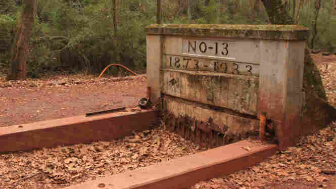 Mine No. 13 at Red Mountain Park is one of the older red ore mines in Birmingham, Ranger Eric McFerrin says.
