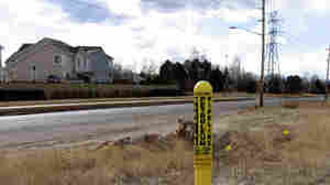 In Colorado, yellow warning poles designate the underground path of a gas pipeline.