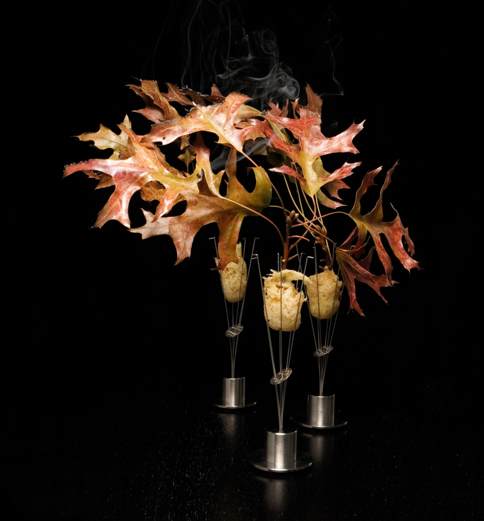 Alinea's version of pheasant, served with shallot, cider gel and burning oak leaves.