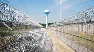 TIMELINE: The History Of 'Guantanamo North'