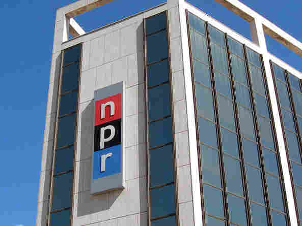 NPR's CEO, Vivian Schiller, has resigned, one day after NPR denounced secretly recorded comments by another top executive.