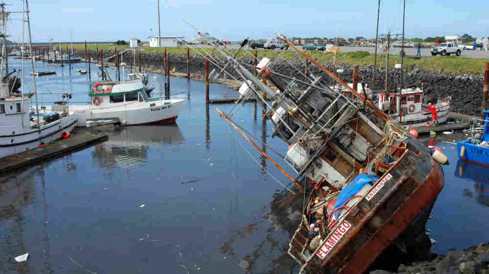 A fishing boat lies on its side in shallow water in the boat basin at Crescent City, Calif., after a tsunami surge withdrew March 11. The surges broke loose and damaged most of the 35 boats that remained in the harbor.