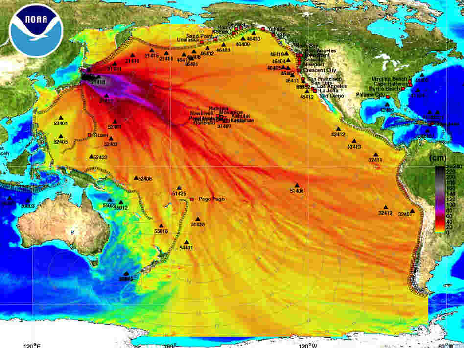 This chart from the National Oceanic and Atmospheric Administration shows the tsunami's expected path across the Pacific Ocean. The dark black and purple indicate the highest rise in sea level. The light gray lines indicate the tsunami wave's expected arrival time. View high-res version.