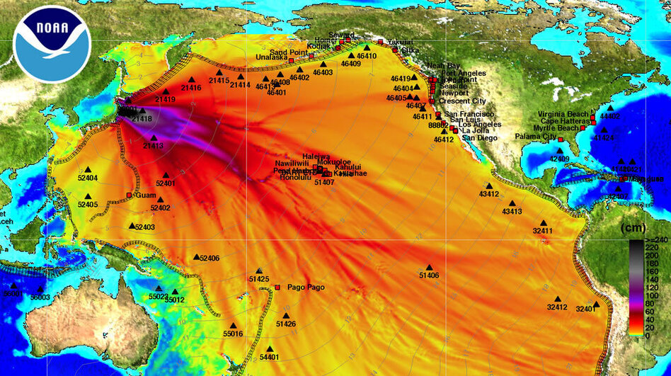 "This chart from the National Oceanic and Atmospheric Administration shows how the tsunami is expected to travel across the Pacific Ocean. The dark black and purple indicate the highest rise in sea level. The light gray lines indicate when the tsunami wave is expected to arrive. <a href=""http://media.npr.org/assets/news/2011/03/11/tsunami-energy-plot.jpg"">View High-Res Version</a>"