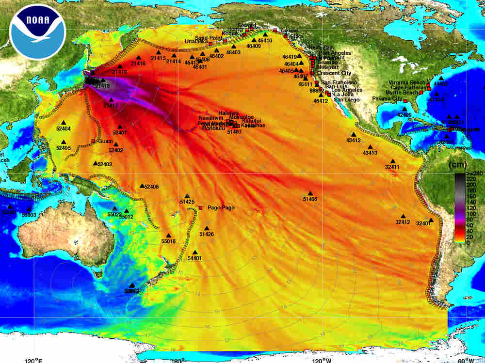 A graphic from NOAA shows its forecast of the path of tsunamis around the Pacific Ocean.