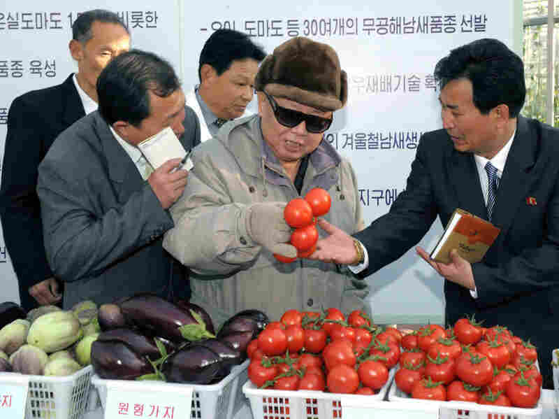 This undated photo released by North Korea's official Korean Central News Agency via the Tokyo-based Korean News Service shows North Korean leader Kim Jong Il inspecting the Pyongyang Vegetable Science Institute in Pyongyang.