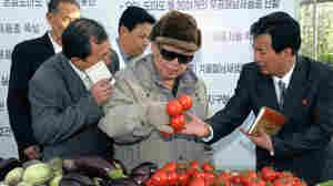 North Korea's Pleas For Food Aid Draw Suspicion