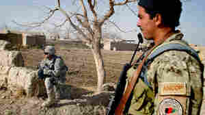 With Spring Comes Fighting Season In Afghanistan