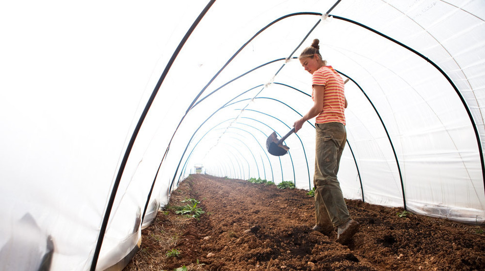 Katherine Stewart spreads compost as the farm prepares to start a new crop of greens. (NPR)