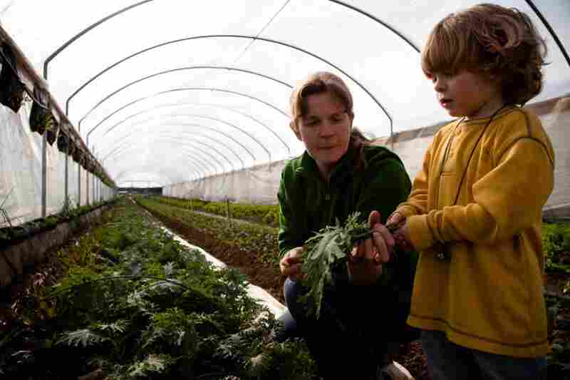 Lester's wife, Georgia O'Neal, teaches their son, Eoin, how to harvest kale that has been growing through the winter in a tunnel covered in plastic.