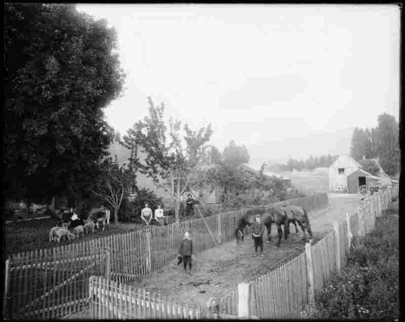 George Naylor, Sugarhouse Ward, Salt Lake City, 1903