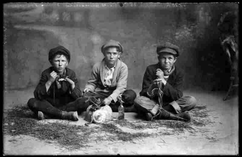 Reed Clements, Louis Tranchell, Gilbert Dillingham and snakes, 1915