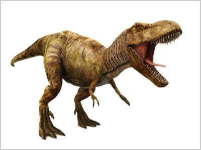 Illustration of a T. Rex