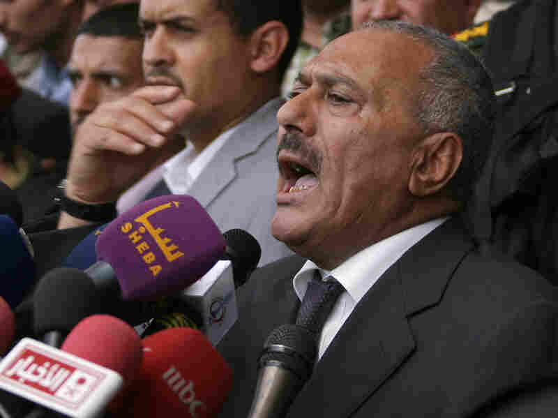 Yemeni President Ali Abdullah Saleh held another pro-regime rally in Sanaa last Friday, which preceded a massive government crackdown against protesters in the nation's capital.