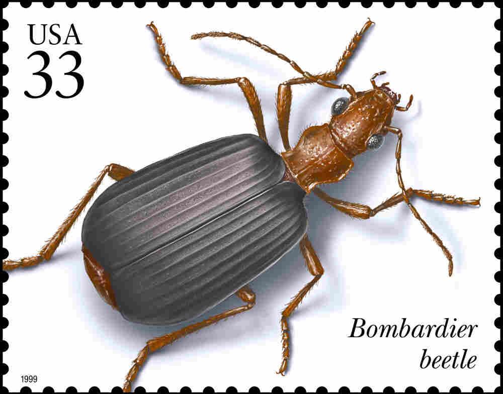 USPS stamp.
