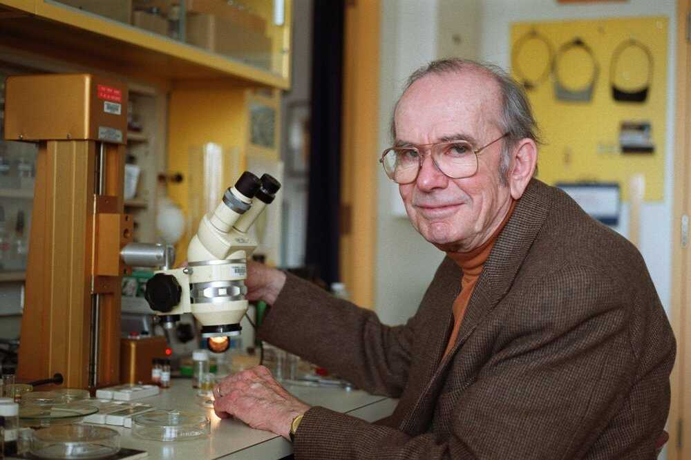 BILL WARREN/Journal Staff Thomas Eisner, emeritus professor of chemical ecology at Cornell University, is pictured in the lab in this file photo from November 2000. Eisner died Friday in Ithaca of complications related to Parkinson's disease at age 85.
